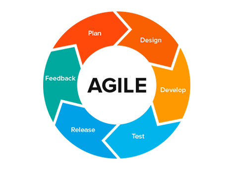 Best agile methodology books for project development and management