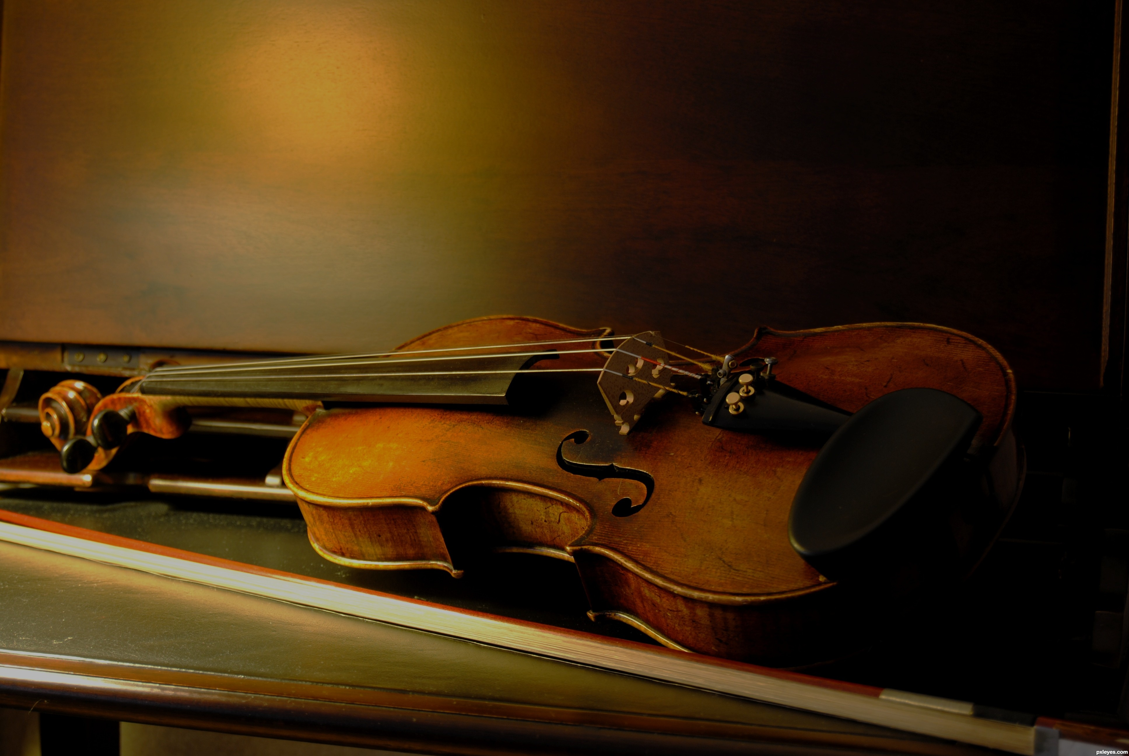 Best Violin Books | Guideline to be a Professional Violinists