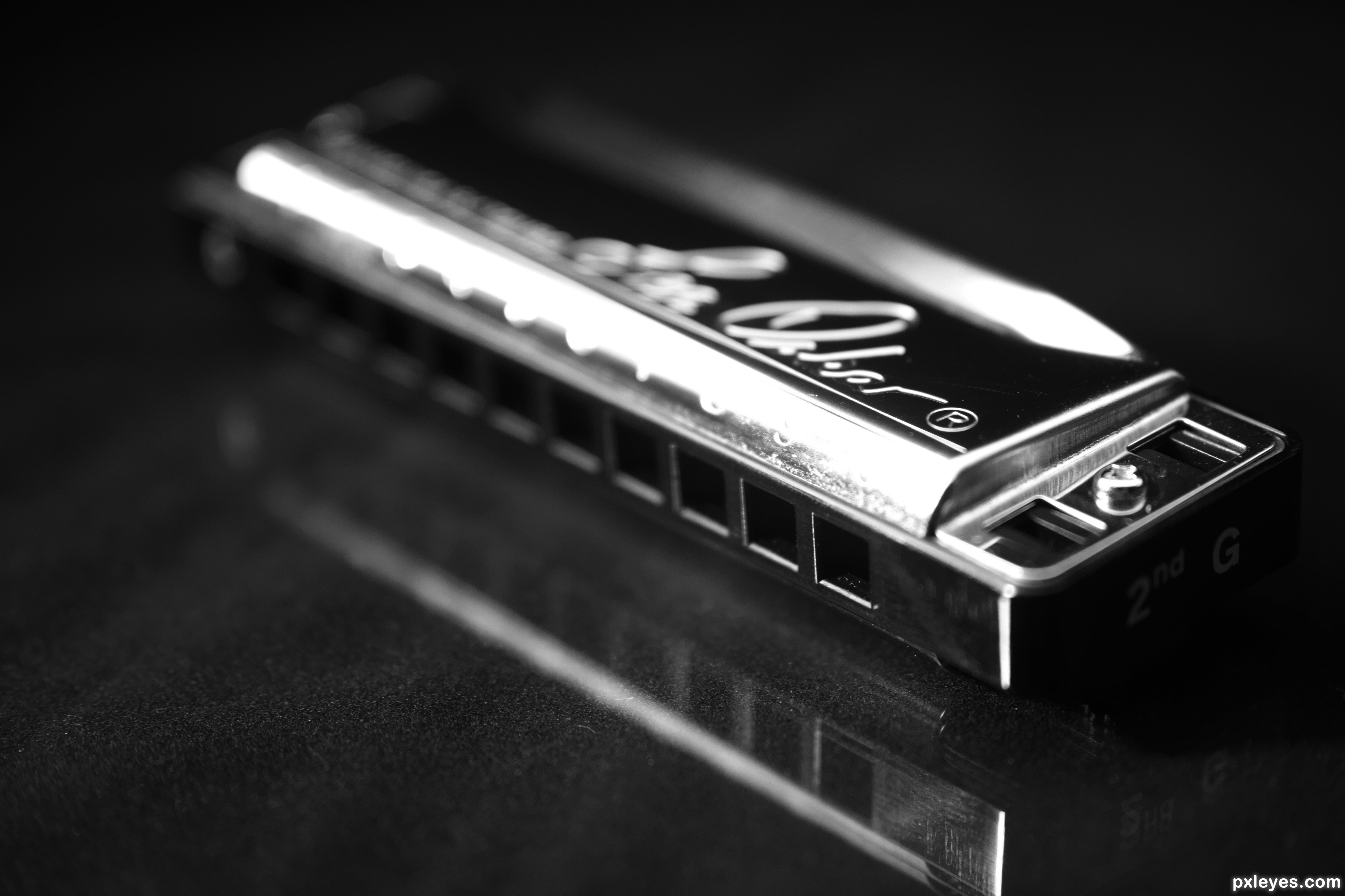 Best Harmonica Books That Help You Learn how Harmonica Play