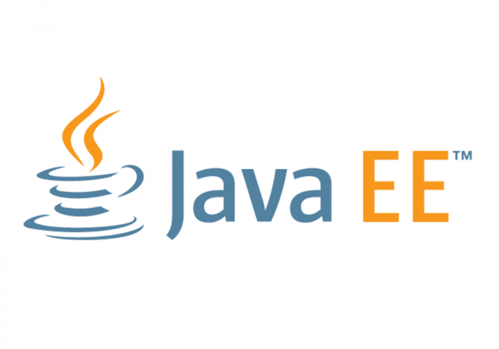 Best Java ee books for develop a secure network or applications